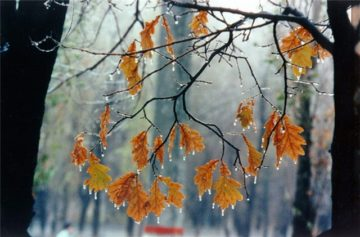 Сочинение Осенняя пора