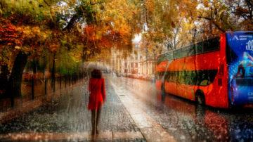 Сочинение Осень в моём городе